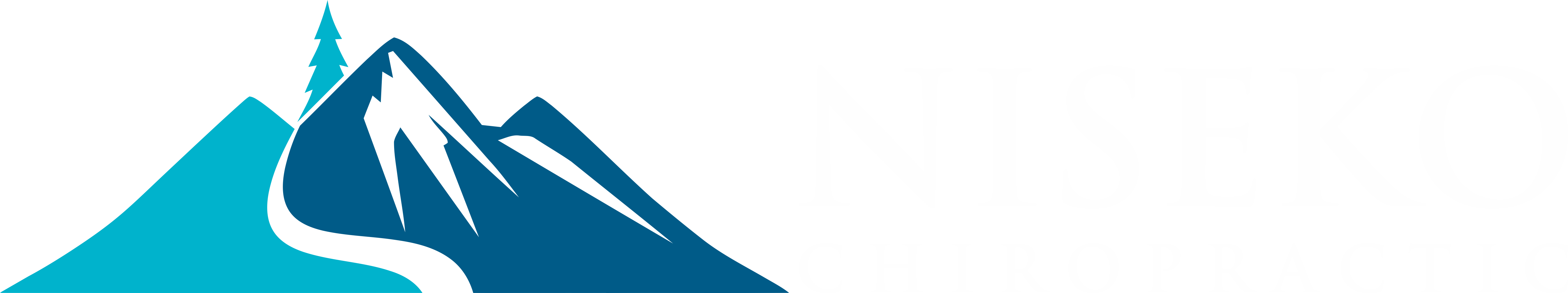 Niseko Chiropractic